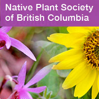Link to the Native Plant Society of BC by Summerland Ornamental Gardens