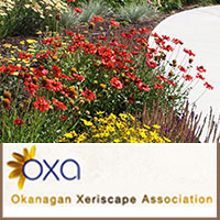 Link to the Okanagan Xeriscape Association by Summerland Ornamental Gardens